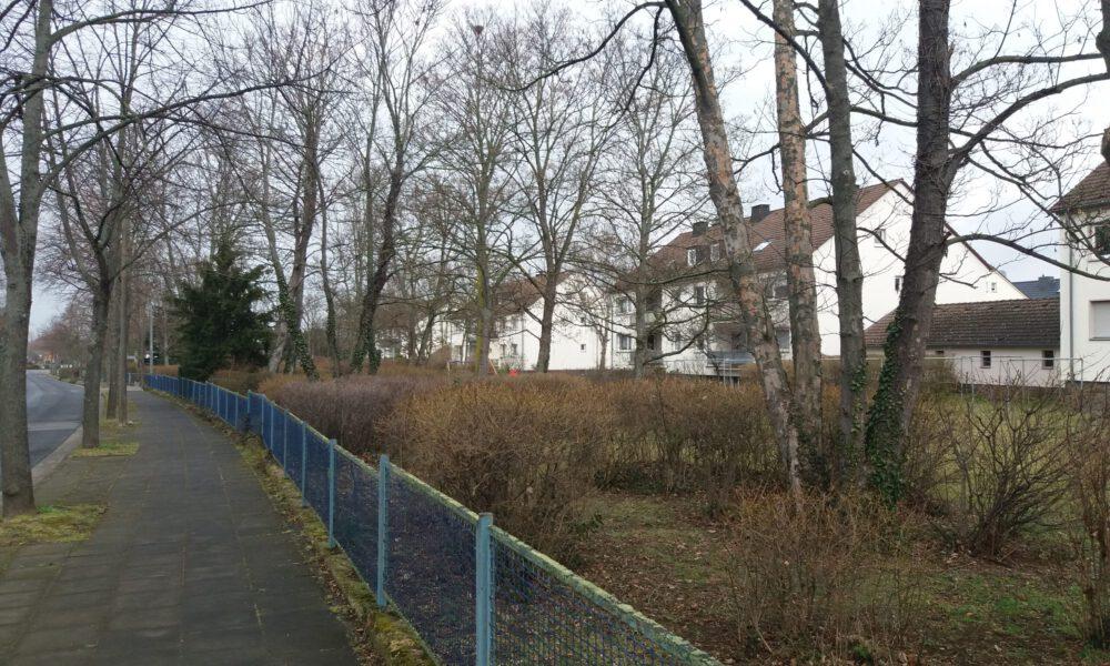 Plangrundstücke an der Aachener Straße